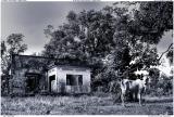 Ruined villa in Kep, Cambodia