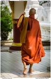 Monk at Kuthadaw Pagoda