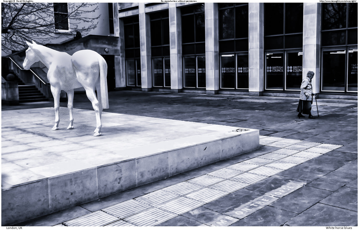 White horse blues