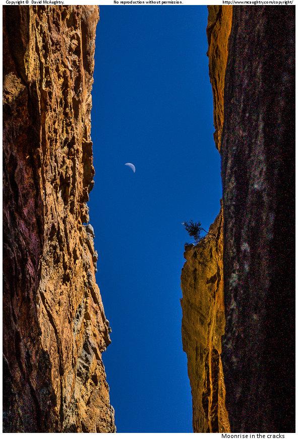 Moonrise in the cracks